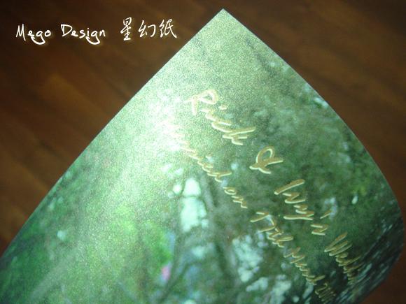 DSC08117 copy.jpg