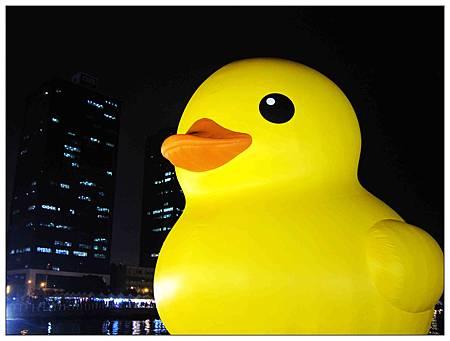 黃色小鴨3