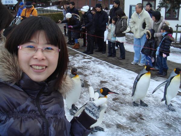 企鵝遊行.JPG