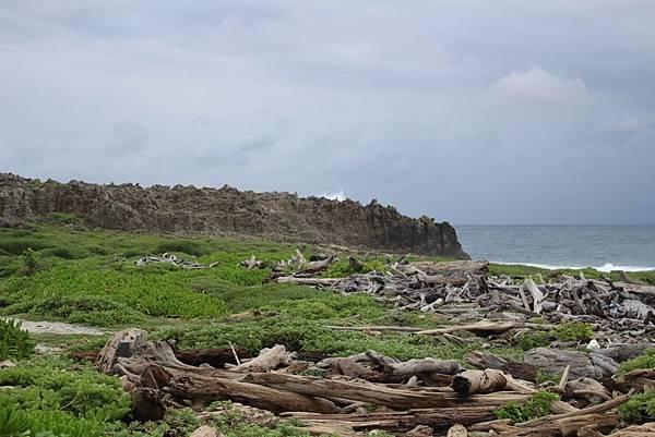 IMG_0923遠處珊瑚礁岩.JPG