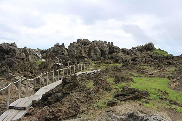 IMG_0995踏上珊瑚礁岩上.JPG