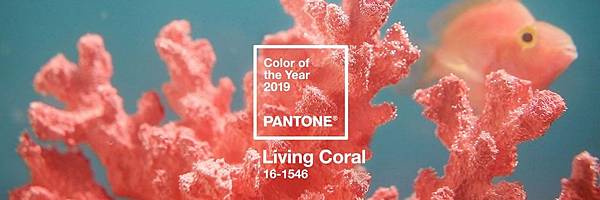 pantone-color-of-the-year-2019-living-colar-designboom-1800.jpg