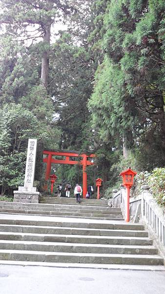 D3-箱根神社階梯