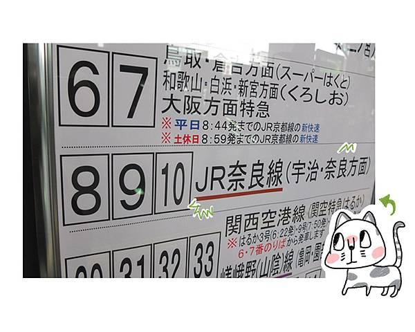 Kyoto go11-1