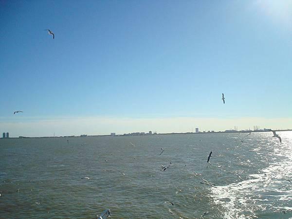 New Year trip - Galveston Houston