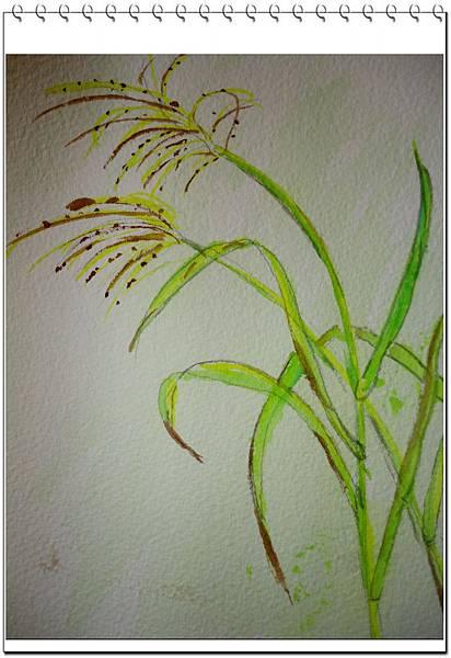 (10)玩水彩--蔬果&蘆葦草2-2.jpg