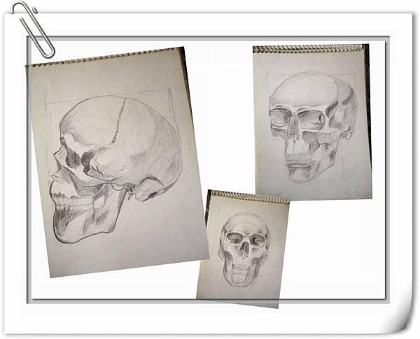 (2)頭部結構1-1