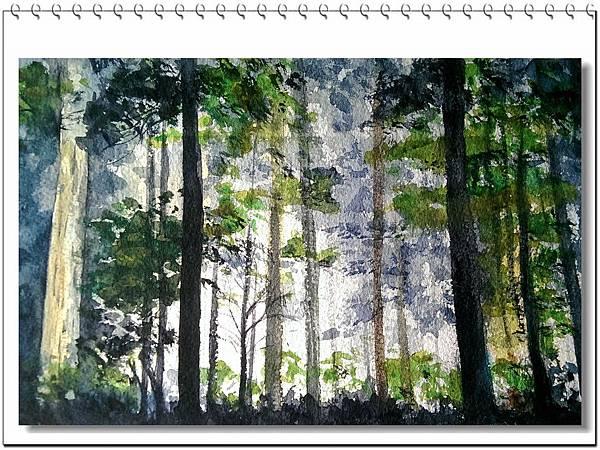 (43)水彩--森林2-1.jpg