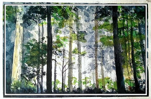 (43)水彩--森林2-2.jpg
