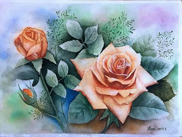 (64)水彩--玫瑰(一)2-2.jpg