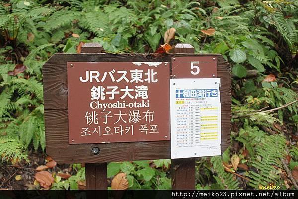20131023奧入瀨溪流 - 214拷貝.jpg