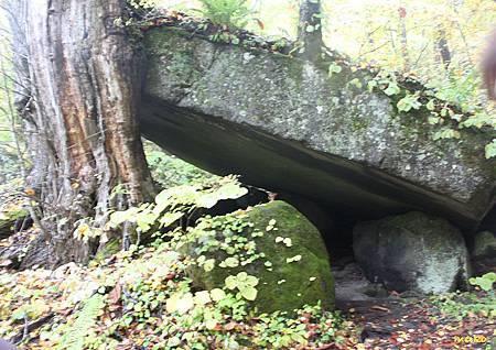 20131023奧瀨入溪流 - 049巨石屋.jpg