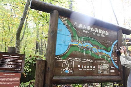 20131023奧瀨入溪流 - 045a.jpg