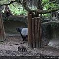 20140618木柵動物園 - 2798.jpg
