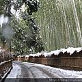 20150103嵐山95.JPG