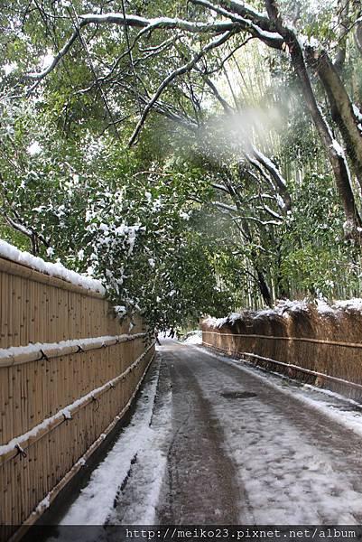 20150103嵐山98.JPG