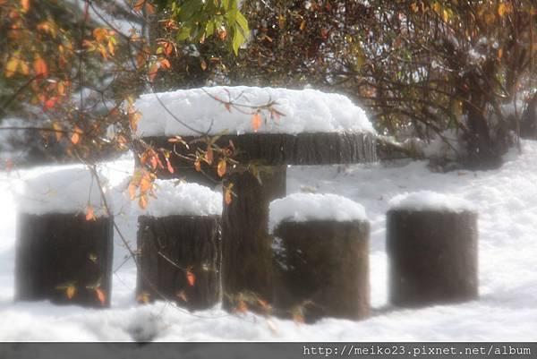 20150103嵐山135.JPG