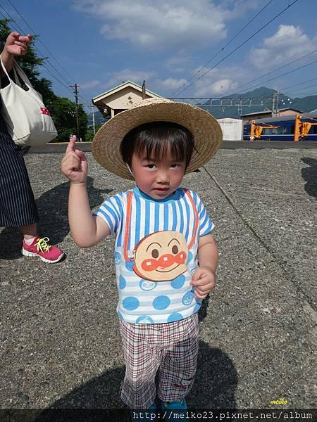 20160618新倉山淺間神社公園 - 228拷貝.jpg
