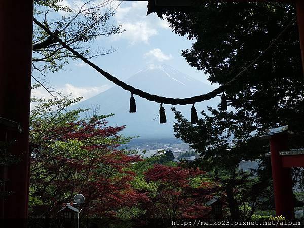 20160618新倉山淺間神社公園 - 178拷貝.jpg