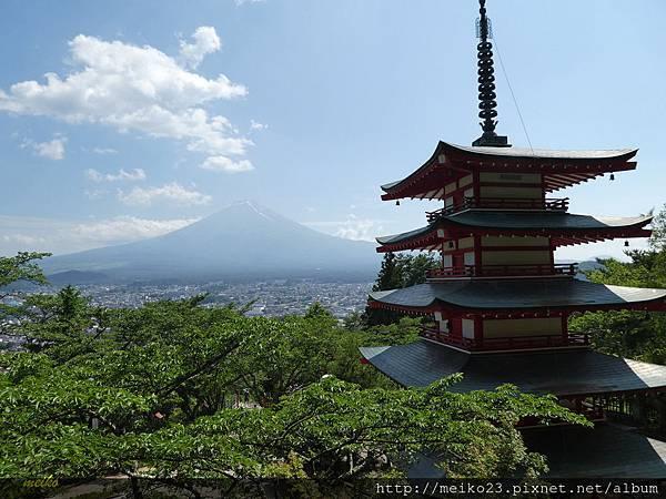 20160618新倉山淺間神社公園 - 128拷貝.jpg