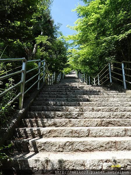 20160618新倉山淺間神社公園 - 098拷貝.jpg