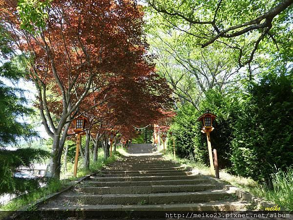 20160618新倉山淺間神社公園 - 061拷貝.jpg