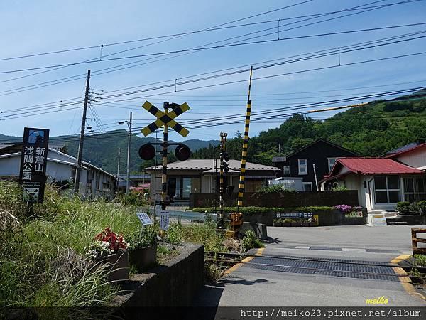 20160618新倉山淺間神社公園 - 037拷貝.jpg