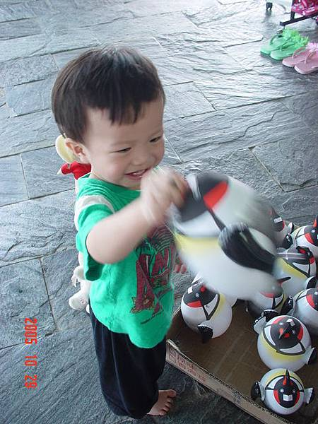 開心的玩著小企鵝~結果買了