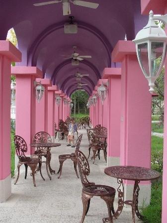 中庭內的夢幻粉紅廊道