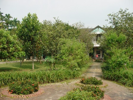 遙遠的彼端是主人家的主屋、左手邊是綠光