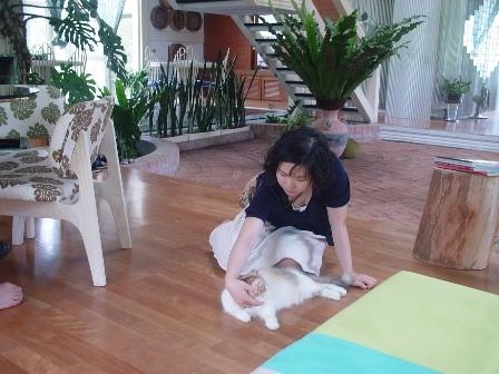 老妹玩貓中(主棟的一樓空間)
