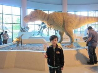 到台中科博館內看恐龍