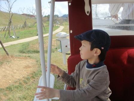 坐著遊園馬車悠閒的看著風景