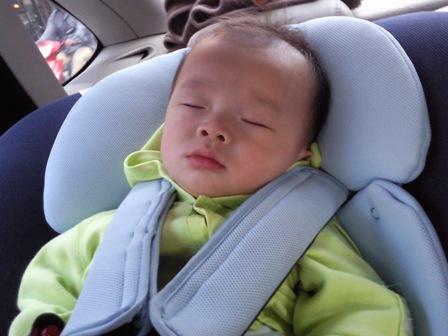 小虎累到不用奶嘴就睡著了