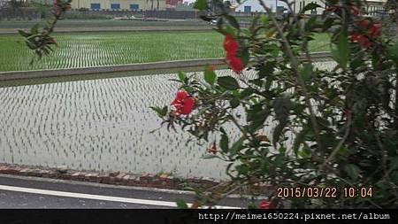 2015.03.22溪湖糖廠&虎尾糖廠 013.jpg