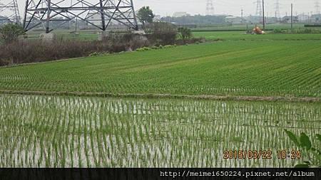 2015.03.22溪湖糖廠&虎尾糖廠 031.jpg