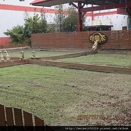 2015.12.20雲林--中興穀堡 123.jpg