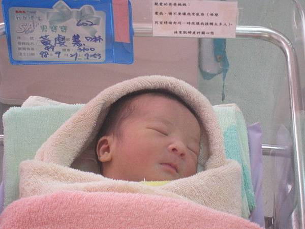 出生第二天,脫了兩層毛巾