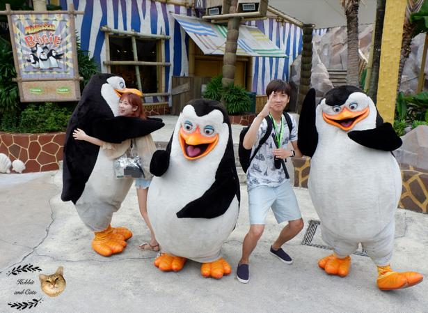 新加坡環球影城馬達加斯加企鵝.jpg