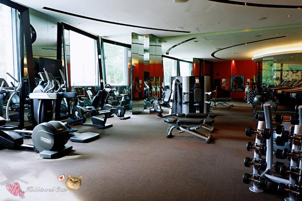 新加坡聖淘沙名勝世界Hard Rock飯店健身房.jpg