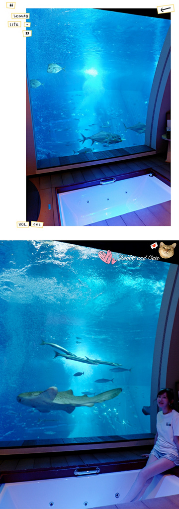 新加坡聖淘沙海景套房ocean suite海底景觀.jpg