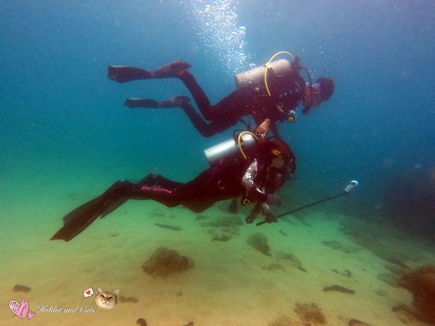 澎湖密境之旅海洋途徑潛水拍攝.jpg