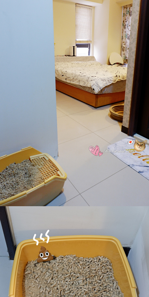 Bmxmao MAOair mini桌上型香氛空氣清淨機5.jpg
