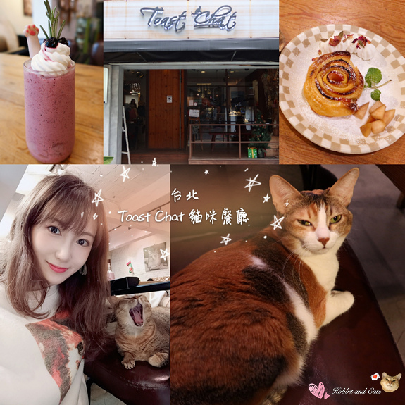 Toast Chat貓咪餐廳24.jpg