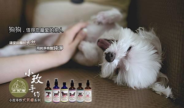 犬芳療Banner_瑪爾.jpg