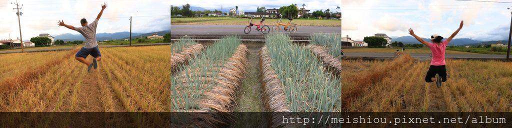 20140720三星自行車遊.jpg