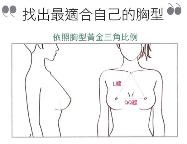 美妍醫美水滴隆乳-黃金比例胸型.png