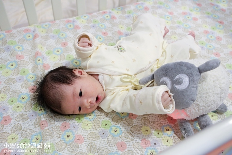 甜夢綿羊Ewan頂級款安撫娃娃玩具-3025.jpg