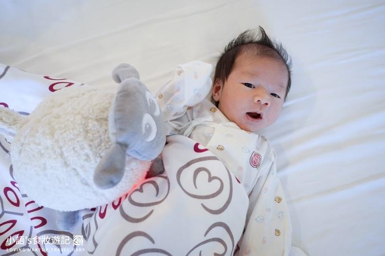 甜夢綿羊Ewan頂級款安撫娃娃玩具-1650467.jpg
