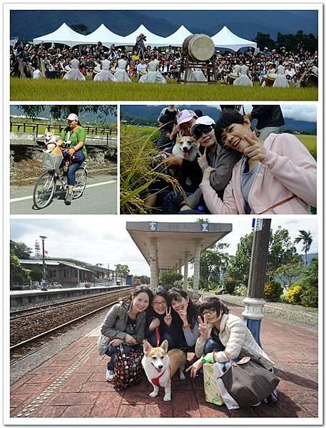 20121103-04-跟著吉寶去旅行2-來花蓮看優人神鼓,愜意騎鐵馬啦!-2.jpg
